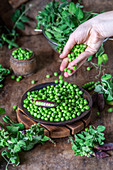 Hand streut grüne Erbsen in einen Teller