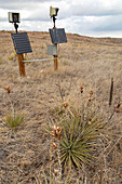 Solar-powered timelapse cameras