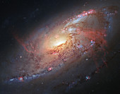 Messier 106 spiral galaxy,Hubble image