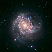 Messier 83 spiral galaxy,Hubble image