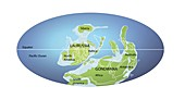 Continents 390 million years ago,illustration