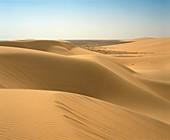 Sand Dunes,Algeria.