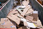 Skip full of cardboard at city tip