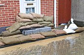 Sandbags propped up outside a front door