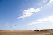 Wind Farm,Easington,East Yorkshire,UK