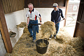 Men with learning disabilities helping to muck out a stable