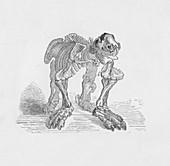Skeleton of the Megatherium, c1885, (1890)