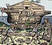 The Building of the Ark Superintended by Noah, (1493), 1903