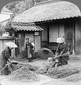 Farmers wives at work, Iwakuni, Japan, 1904