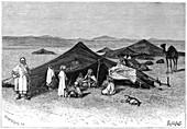 Nomad encampment, Sahara, c1890