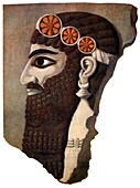 The head of an Assyrian priest or winged divinity, 1933-1934
