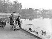 Village duck pond scene, South Yorkshire, 1961