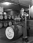 Weighing barrels of blended whisky at Wiley & Co, 1960