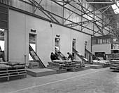 Loading animal feed onto conveyors, 1961