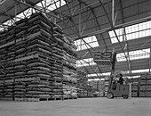 Warehouse scene with forklift truck, 1961