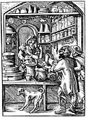 Druggist, 16th century