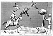 Heron hawking, 14th century