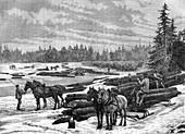 Canadian loggers, 19th century