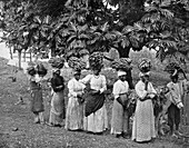 Banana carriers, Jamaica, c1905