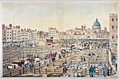 Smithfield Market, City of London, 1855