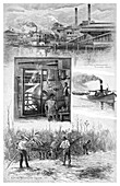 The sugar industry, Richmond River, Australia, 1886