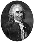 Carolus Linnaeus, Swedish botanist, physician and zoologist