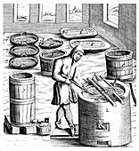 Crystallization of saltpetre, 1683
