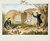 Lincolnshire Duck Decoy, c1845