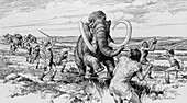 Scene of a mammoth being killed