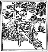 Witches turned into animals as they ride through the air