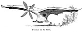 Clement Ader's flying bird 'Eole', 1890