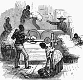 Slave labour on a cotton plantation, southern America