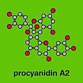 Proanthocyanidin A2 cranberry molecule