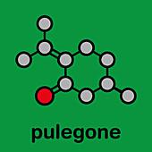 Pulegone molecule