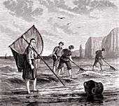 Fishing for shrimp, 19th century