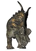 Achelousaurus, illustration