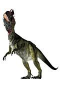 Cryolophosaurus, illustration