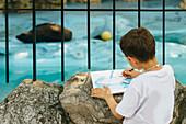 Boy drawing a seal