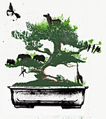 Assorted animals in bonsai tree, illustration