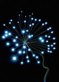 Glowing fibre optic cables, illustration