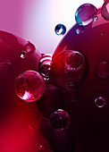Red bubbles, illustration