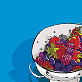 Berries in colander, illustration