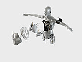 Male robot torso, illustration