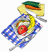 Healthy packed lunch of sandwich and fruit, illustration