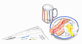 Bacon and egg breakfast, illustration