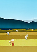 Farm workers bending in rural field, illustration
