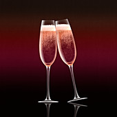 Pink champagne in flutes toasting, illustration