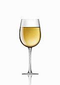 Single glass of white wine, illustration