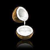 Coconut milk pouring from coconut, illustration