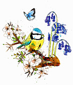 Blue tit sitting on blossom branch, illustration